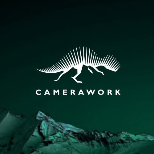 Logo for a cameraman who loves mountainous landscapes and who works in TV, movies and photographs.