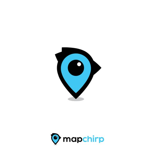 Logo for Mapping Project