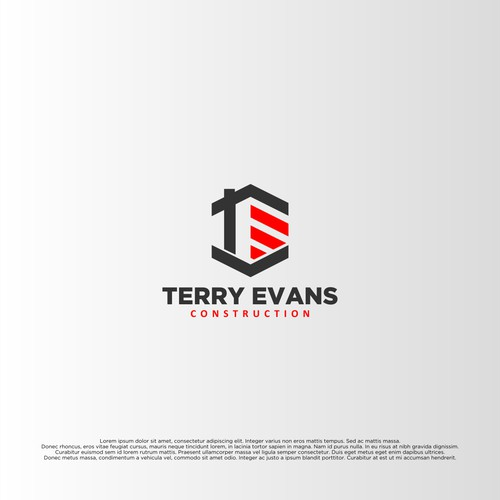 Concept Logo for Terry Evans Cinstruction