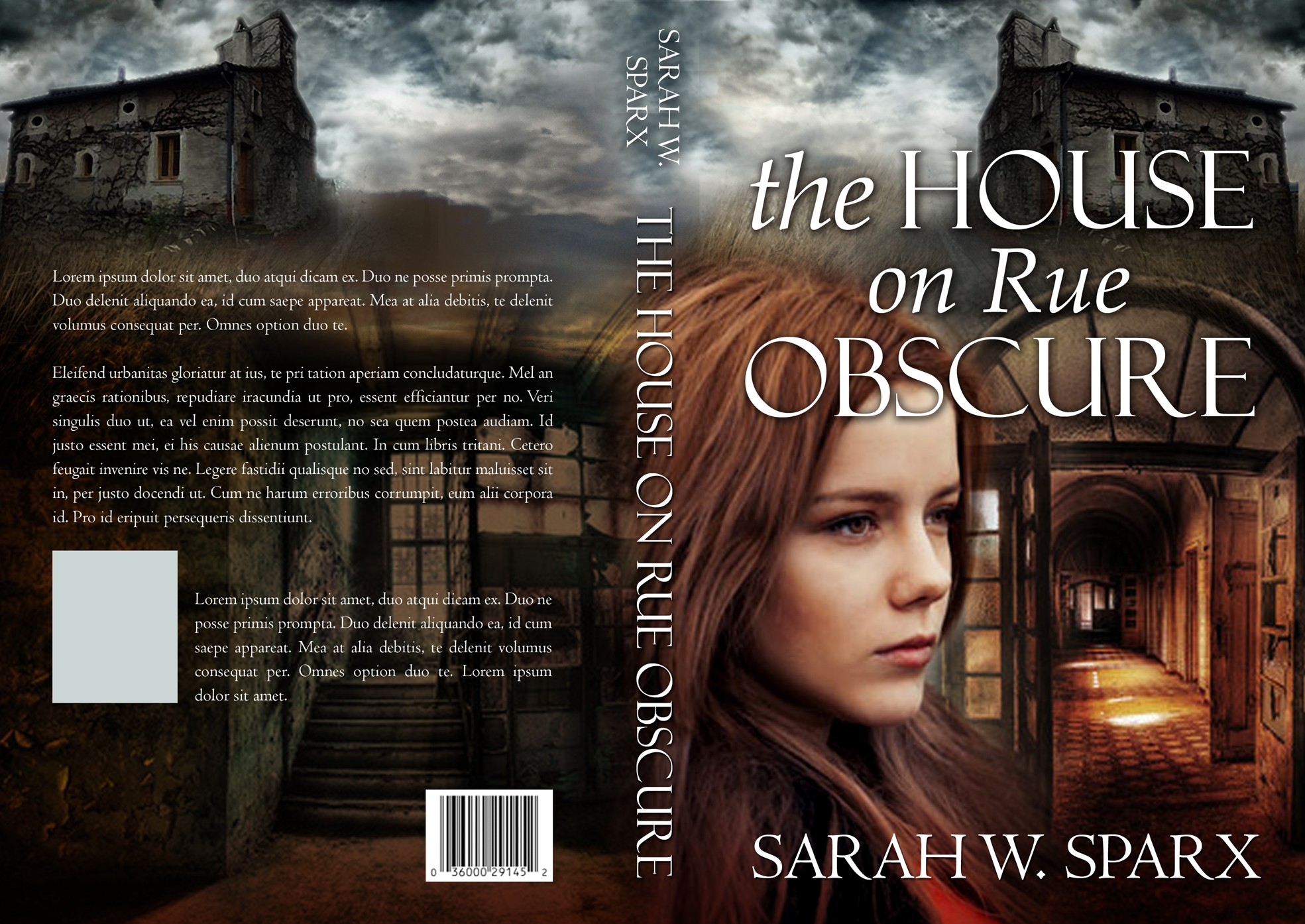 Book Cover for: Gothic-flavoured romantic suspense set in southern France