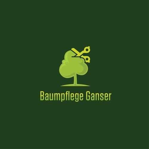 Logo concept for an arborist company