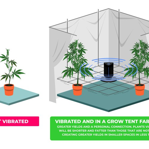 Illustration of plant vibrator