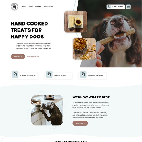 Homepage for a Dogs food shop