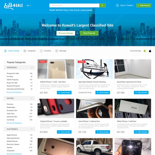 Web Design for a Classified Website