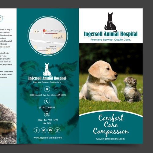 Modern animal hospital seeks exciting design for new brochure