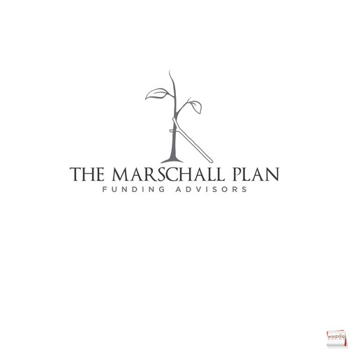 fun logo for financial advising business