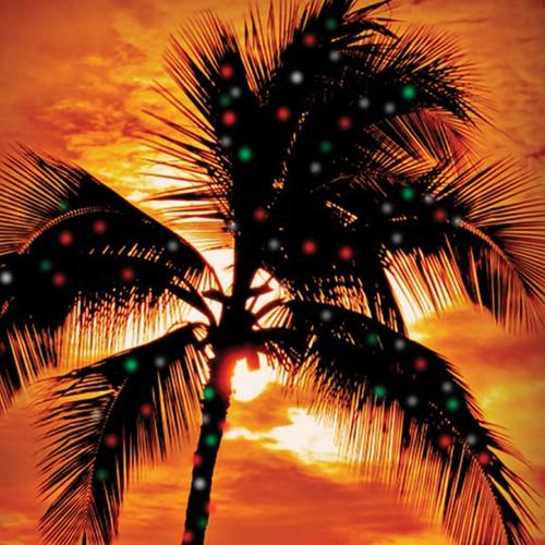 Design a Holiday card for a Hawaiian Company