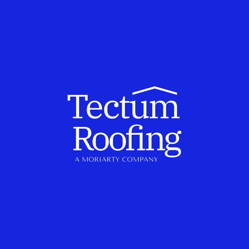 Tectum Roofing Logo Design (Unused)