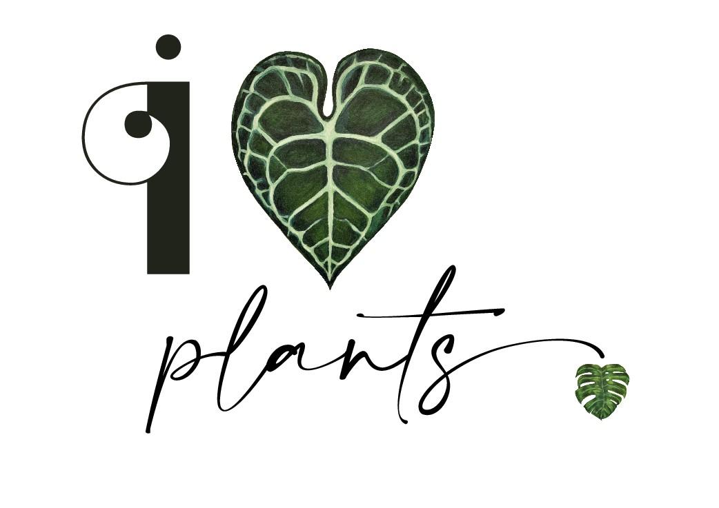 Botanical Art Print A3 for Instagram Campaign