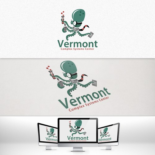 Help Vermont Complex Systems Center with a new logo