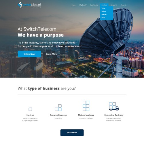 Impressive Landing page for telecom business