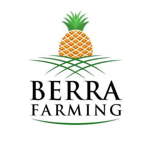 Pineapple farming