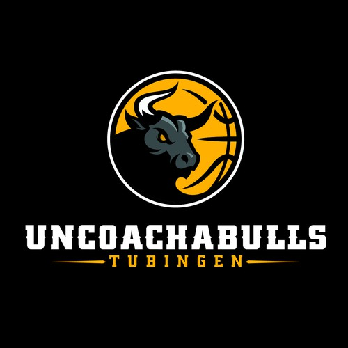You got skillz? We are looking for a fresh and new logo for our basketball team