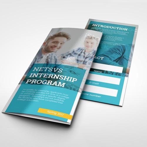 NETSVS brochure