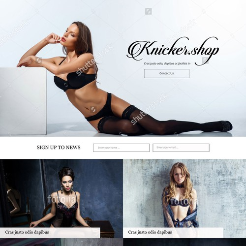 Landing page for lingerie shop