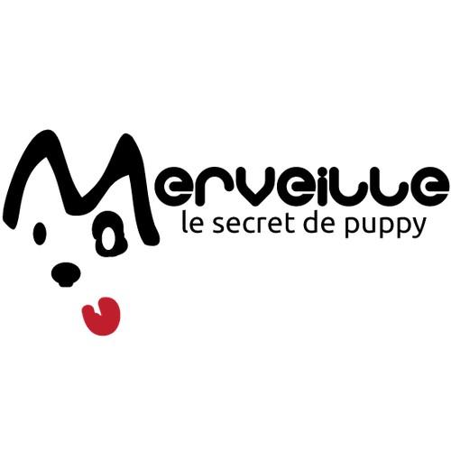 1st logo wanted for Merveille International