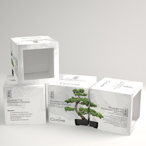 Packaging Design for Bonsai Plant