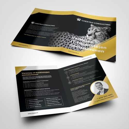 Cheetah Consulting brochure