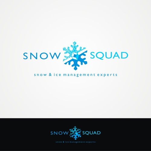 Build a simple, revolutionary logo for snow removal experts.