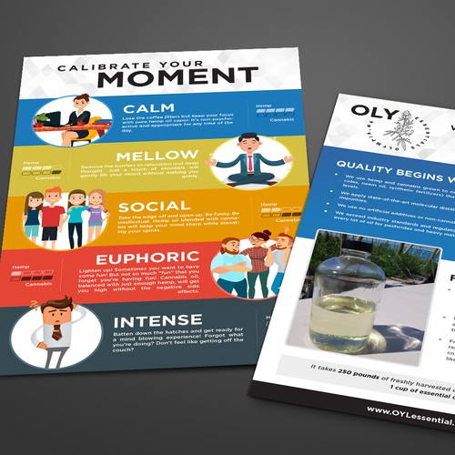 Brochure design for OLY Essentials