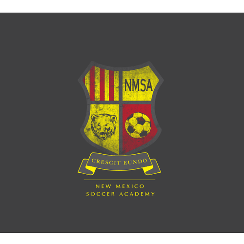 New logo wanted for New Mexico Soccer Academy