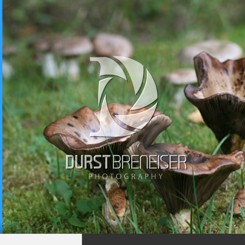 Create the next logo for Durst Breneiser Photography