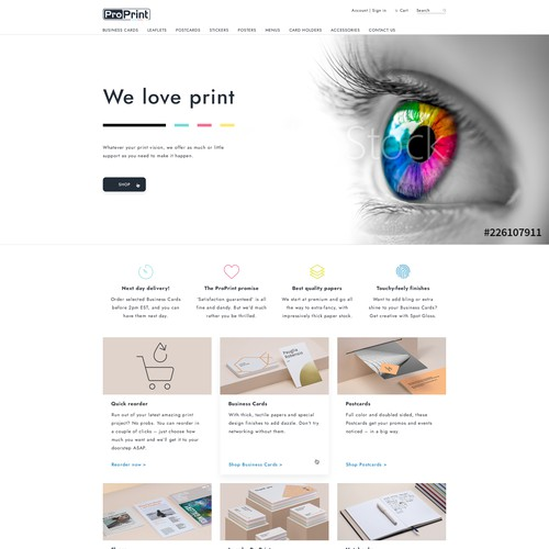 Homepage Design for Pro Print