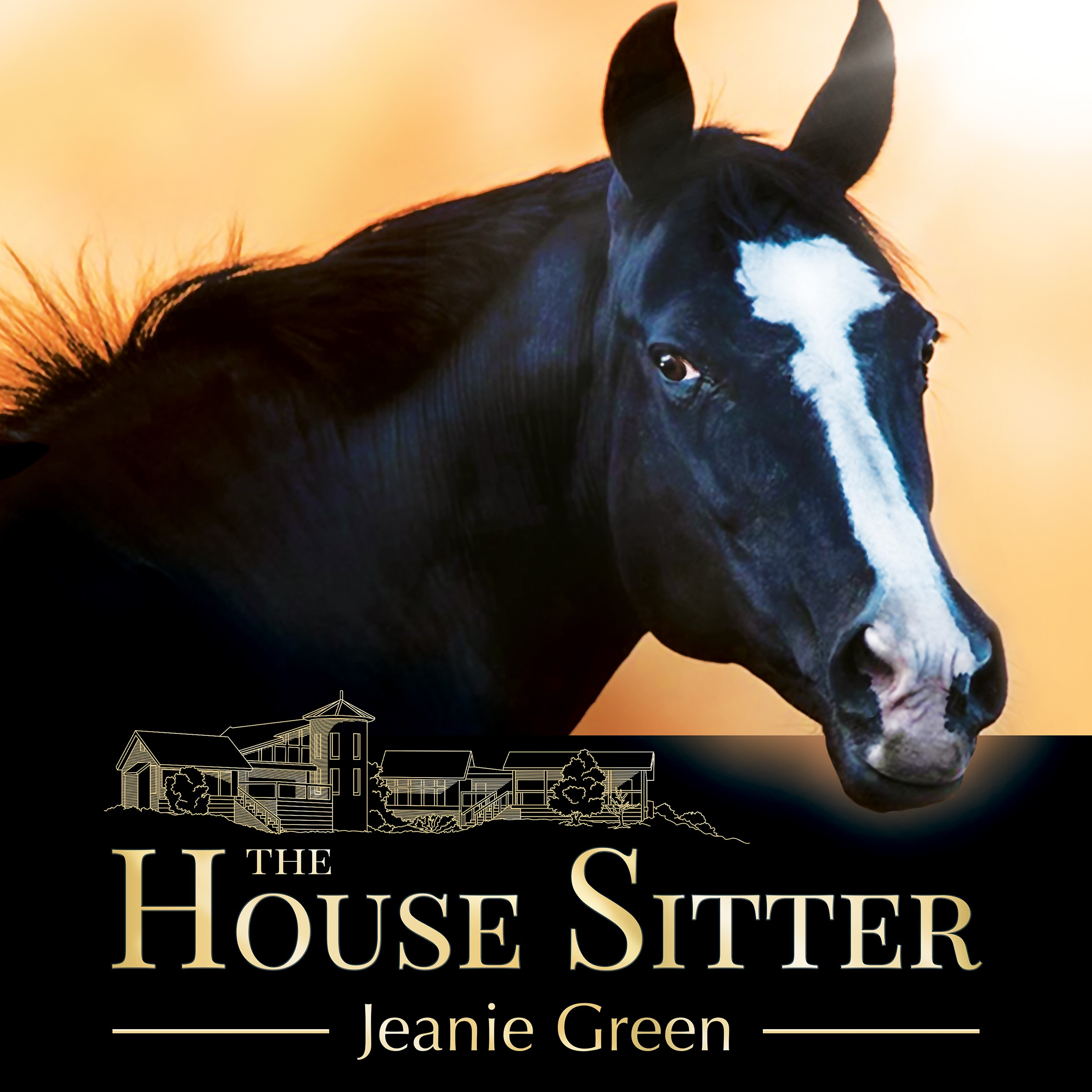 The House Sitter - Files for eBook, Audiobook and Hardback
