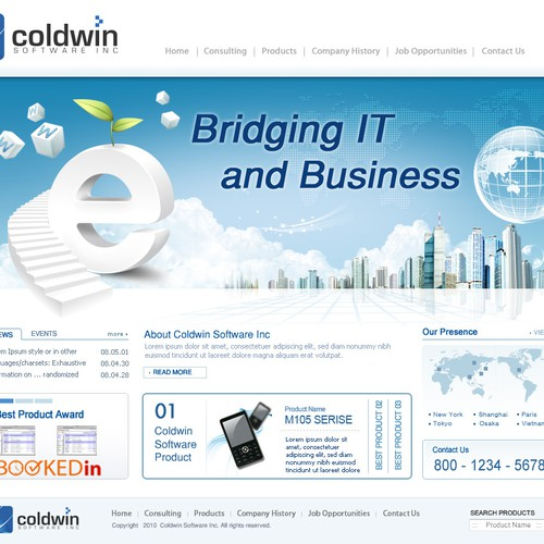 Help! Software company needs professional web site
