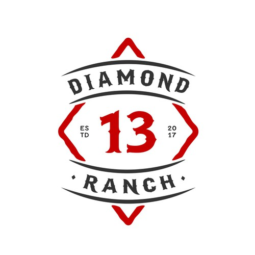 Design a brand/logo for 13 of Diamonds Ranch