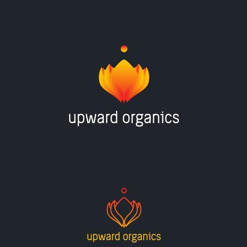 Feminine Holistic Organic Growth Upward