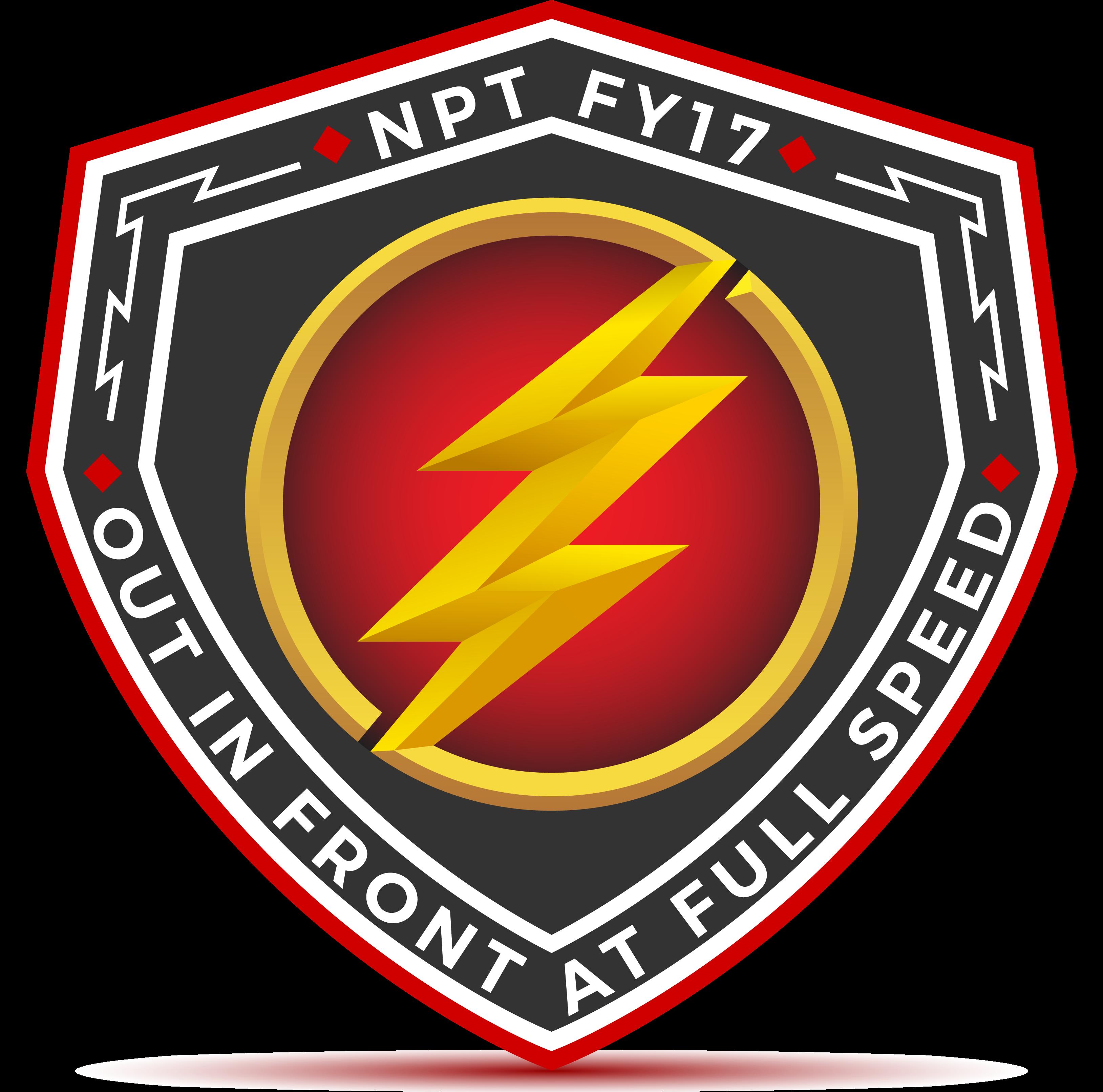 Cisco NPT Logo