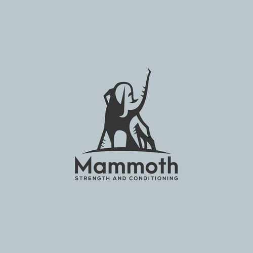 Logo for Mammoth gym and online presence