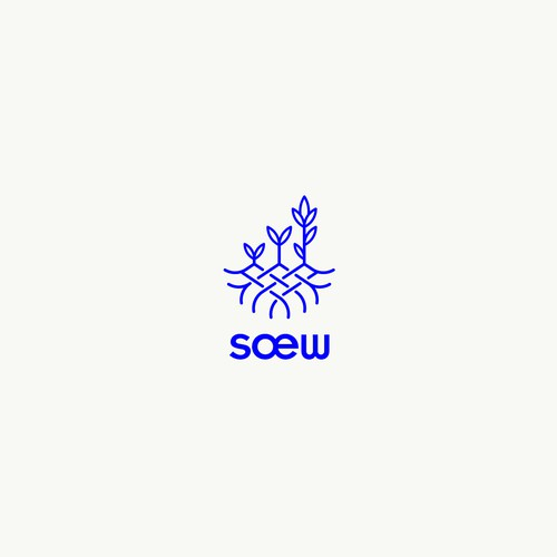 Sœw digital marketing agency