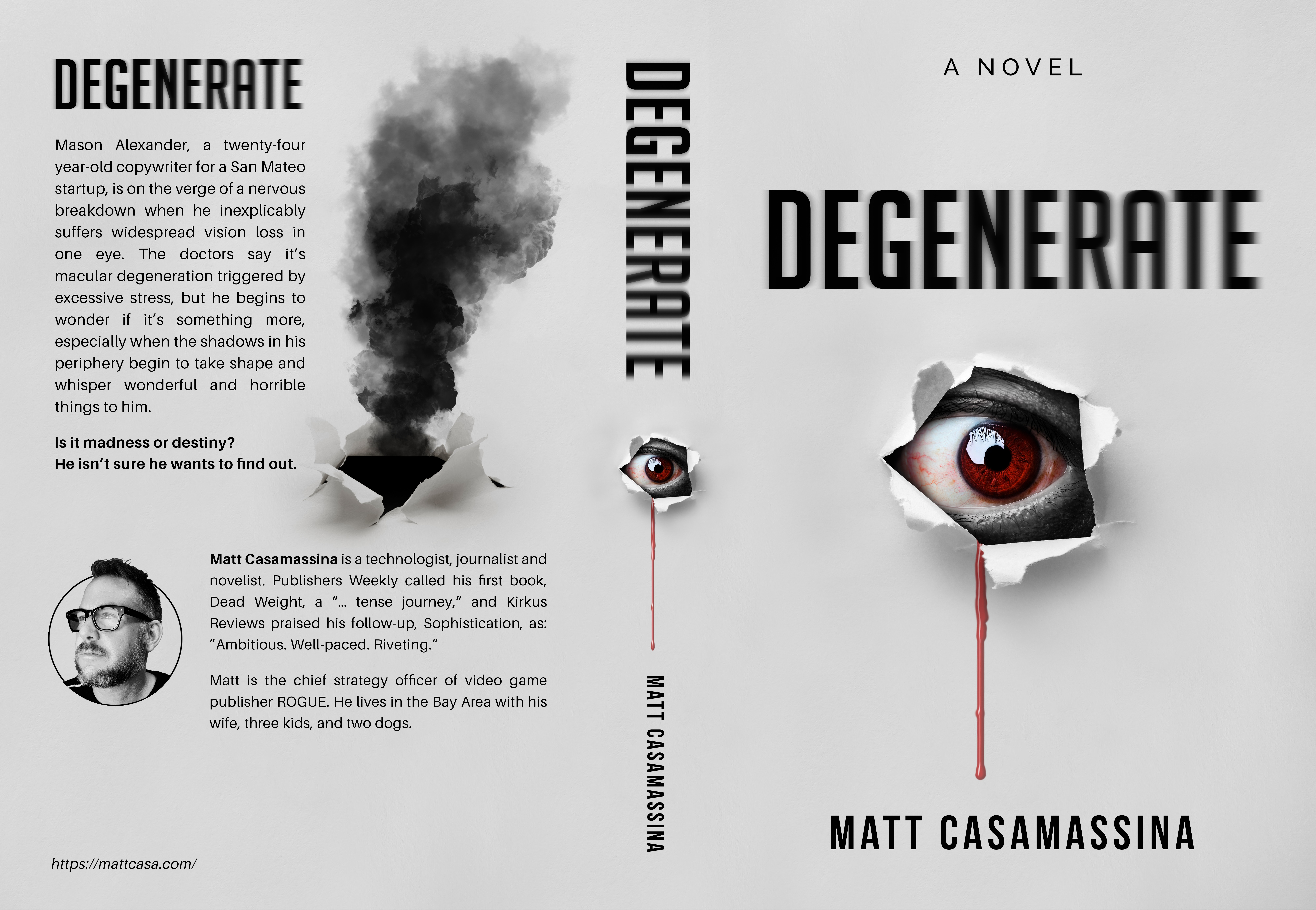 Degenerate Book Cover