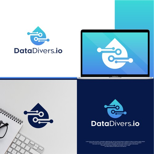 Logo for Data Divers