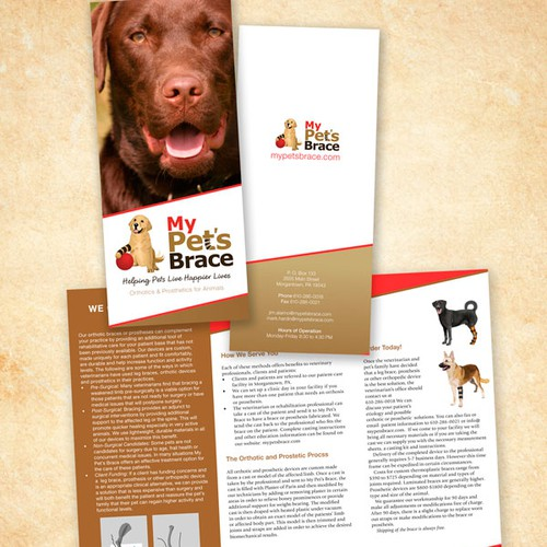 Brochure for company that provide pets with braces or prostheses