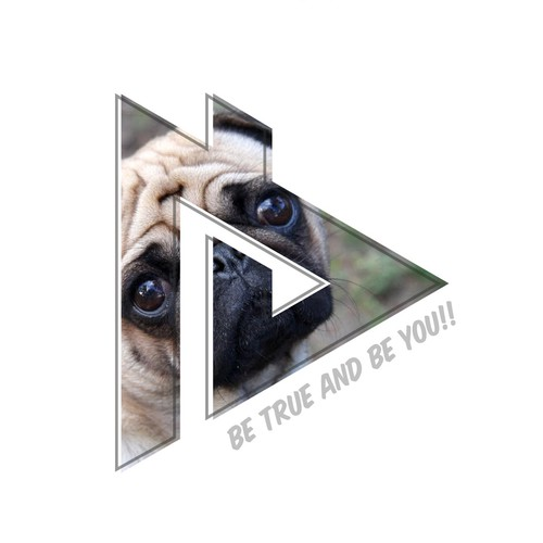 Logo_Aaron Burriss