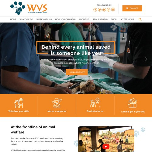 Homepage Design for Worldwide Veterinary Service