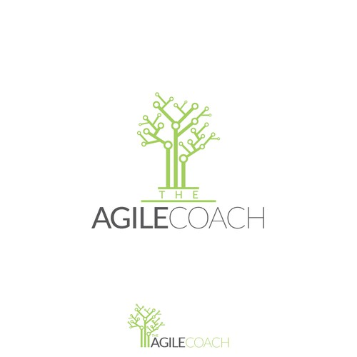 The Agile Coach
