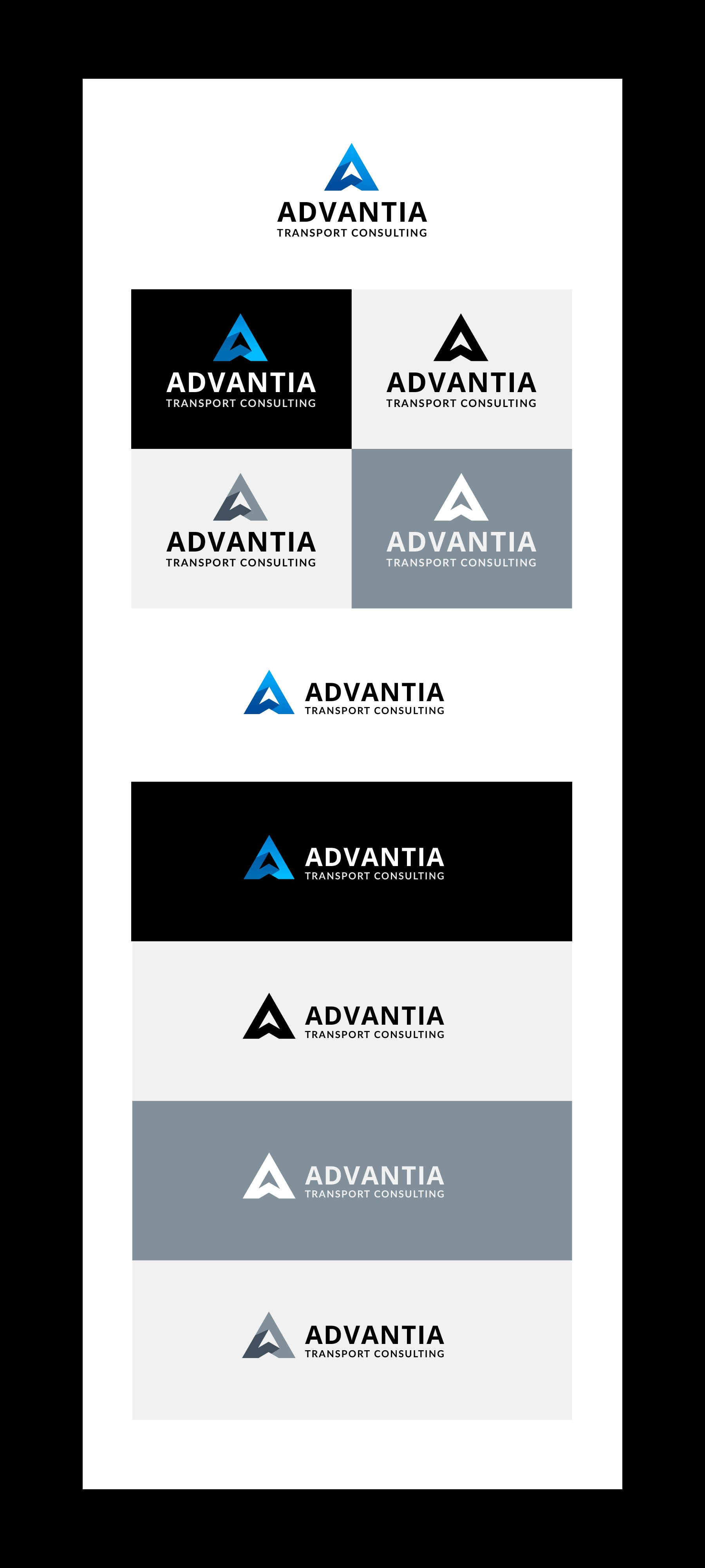 Fresh new logo for an established but rapidly growing consulting business