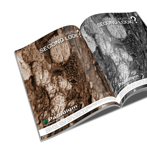 Create a print ad concept for a leading software company
