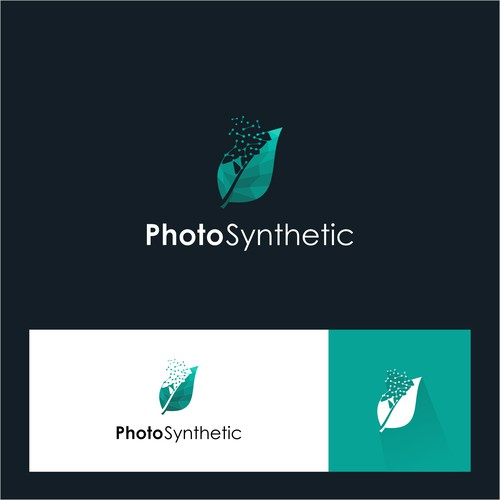 Photo Synthetic