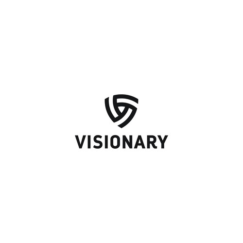 Logo concept for Visionary