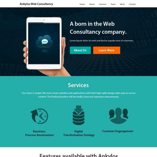 Web Consultant