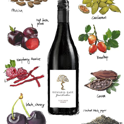 Hand Drawn illustration for a wine company