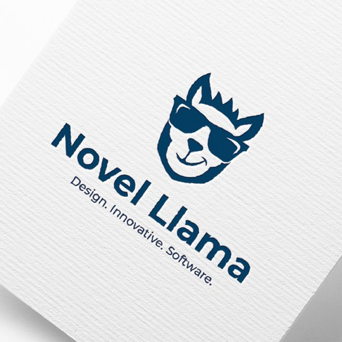Novel Llama