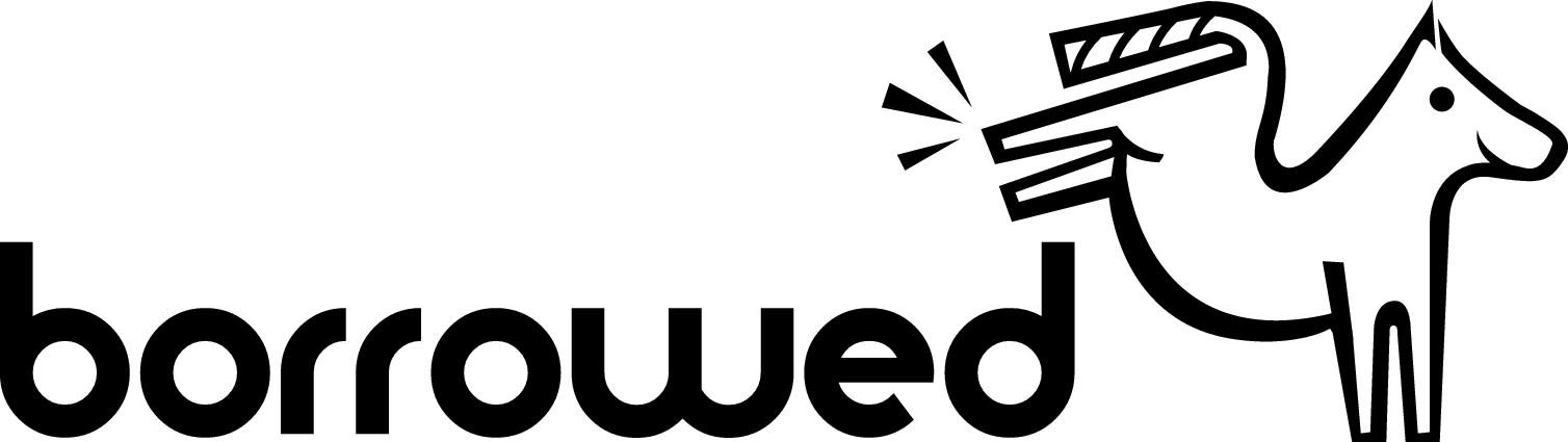 'Borrowed Horse' Logo Design