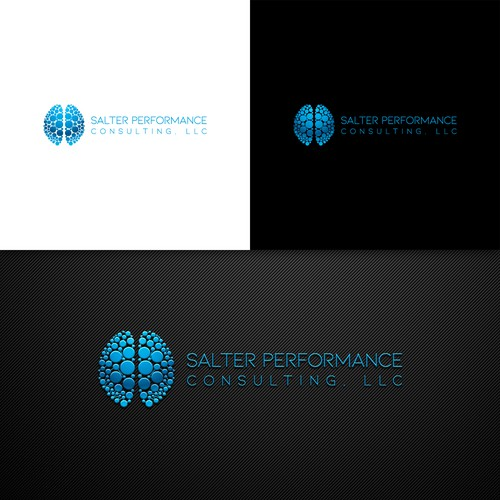 Salter Performance Consulting Logo