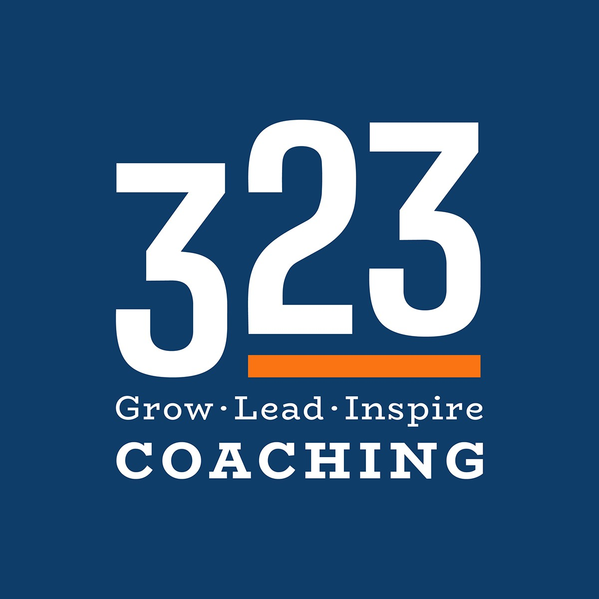 Unique, fresh, Powerful, leadership type logo for our leadership, life & business coaching